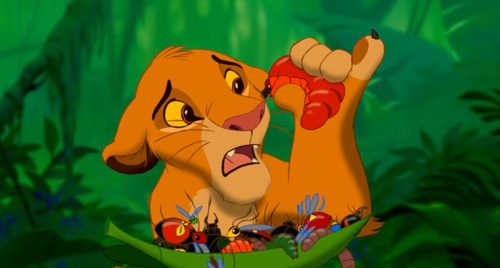 Simba eating insects