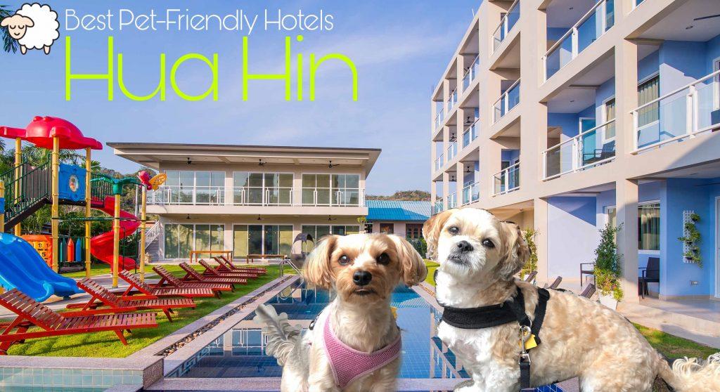 Best Pet-Friendly Hotels in Hua Hin