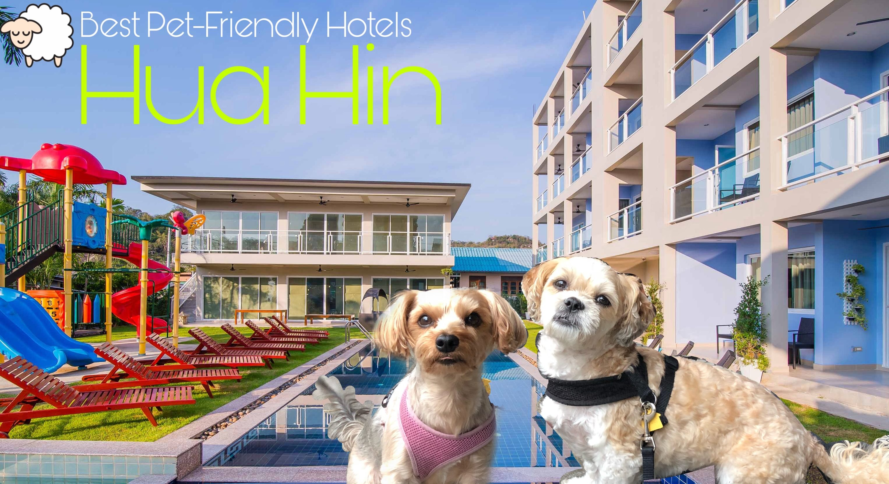 Pet-Friendly Hotels In Thailand (Hua Hin)