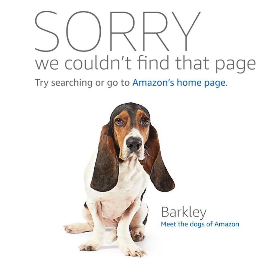 Amazon.com dogs
