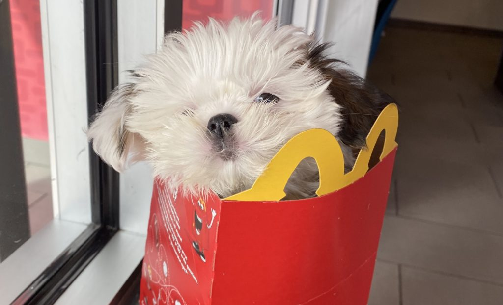 @CloudFrancisco when she could fit into a Happy Meal