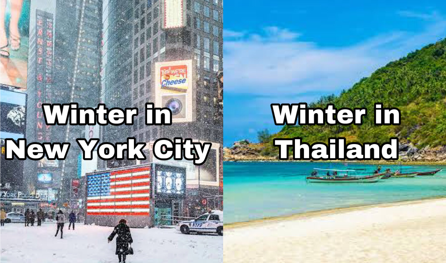 NYC vs Thailand